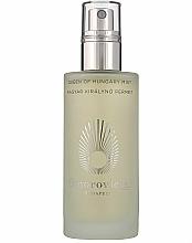Parfums et Produits cosmétiques Brume tonique pour visage - Omorovicza Queen Of Hungary Mist