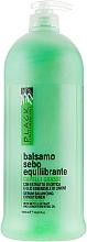 Parfums et Produits cosmétiques Après-shampooing à l'extrait d'ortie - Black Professional Line Sebum-Balancing Conditioner