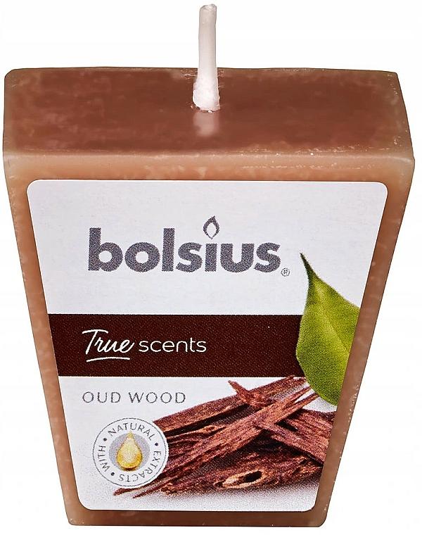Bougie parfumée, Bois d'Oud, 47/47 mm - Bolsius True Scents Candle