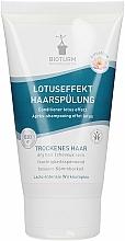 Parfums et Produits cosmétiques Après-shampooing à l'extrait de moringa - Bioturm Lotus Effect Conditioner Nr.18