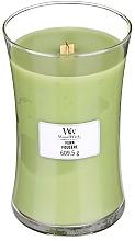 Parfums et Produits cosmétiques Bougie parfumée avec mèche en bois, Fougère - WoodWick Hourglass Candle Fern