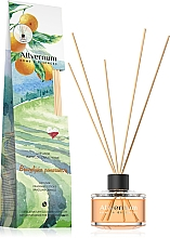Parfums et Produits cosmétiques Bâtonnets parfumés Orange de Brézil - Allverne Home&Essences Diffuser
