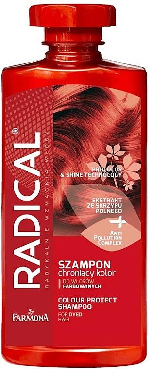 Shampooing à l'extrait de prêle des champs - Farmona Radical Pro Color & Shine Technology Shampoo