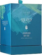 Parfums et Produits cosmétiques Scottish Fine Soaps Sea Kelp Marine Spa Luxurious Gift Set - Set (crème pour corps/75ml + gommage pour corps/75ml + crème de douche/75ml + savon/40g)