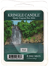 Parfums et Produits cosmétiques Cire parfumée pour lampe aromatique - Country Candle Fiji Wax Melts