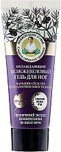 Parfums et Produits cosmétiques Gel rafraîchissant au genévrier pour pieds - Les recettes de babouchka Agafia Juniper Foot Gel