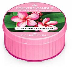 Parfums et Produits cosmétiques Bougie parfumée - Kringle Candle Blooming Plumeria