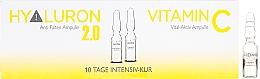 Parfums et Produits cosmétiques Ampoules à l'acide hyaluronique et vitamine C pour visage - Alcina Hyaluron 2.0 & Vitamin C Ampulle