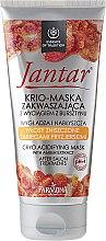Parfums et Produits cosmétiques Masque acidifiant à l'extrait d'ambre pour cheveux abîmés - Farmona Jantar Krio Mask