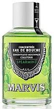Parfums et Produits cosmétiques Bain de bouche concentré à la menthe - Marvis Concentrate Spreamint Mouthwash