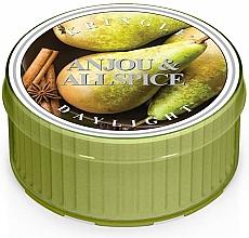 Parfums et Produits cosmétiques Bougie chauffe-plat - Kringle Candle Anjou&Allspice Daylight