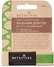 Parfums et Produits cosmétiques Baume à lèvres régénérant au beurre de karité et au cassis - Botavikos Regenerating Lip Balm