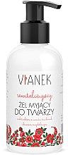 Parfums et Produits cosmétiques Gel nettoyant revitalisant à l'extrait de fraise pour visage - Vianek Revitalizing Gel