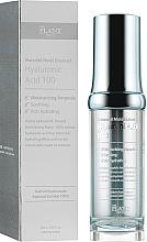 Parfums et Produits cosmétiques Acide hyaluronique 100 % pour visage - The Plant Base Waterfall Moist Balanced Hyaluronic Acid 100