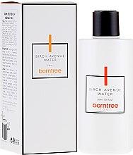 Parfums et Produits cosmétiques Eau rafraîchissante pour visage - Borntree Root Birch Avenue Water