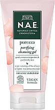 Parfums et Produits cosmétiques Gel nettoyant à l'eau de rose pour visage - N.A.E. Purezza Purifying Cleansing Gel