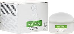 Parfums et Produits cosmétiques Masque au chardon sauvage pour cheveux - Natura Siberica Alladale Repairng Natural Hair Mask