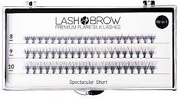 Parfums et Produits cosmétiques Faux-cils individuels - Lash Brown Premium Flare Silk Lashes Spectacular Short