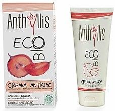 Parfums et Produits cosmétiques Crème aux extraits aqueux de son de blé pour visage - Anthyllis Anti-Aging Face Cream