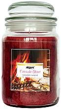 Parfums et Produits cosmétiques Bougie parfumée en jarre Lueur au coin du feu - Airpure Jar Scented Candle Fireside Glow