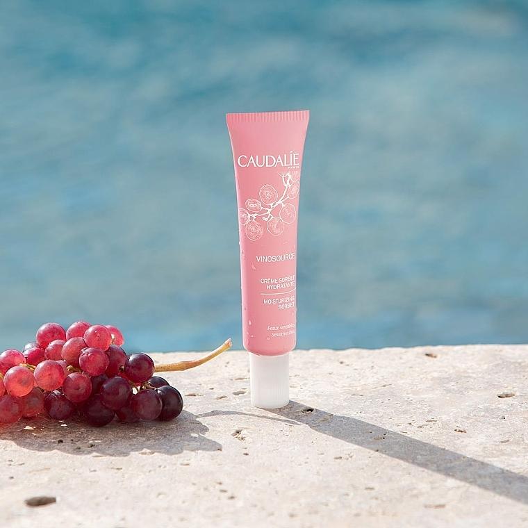 Crème sorbet à l'eau de raisin bio pour visage - Caudalie Vinosource Moisturizing Sorbet — Photo N5