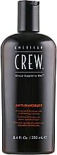 Parfums et Produits cosmétiques Shampooing à l'extrait de feuilles de sauge et romarin - American Crew Anti Dandruff+Sebum Control Shampoo
