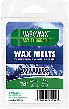 Parfums et Produits cosmétiques Cire parfumée pour lampe aromatique - Airpure VapoWax Wax Melts