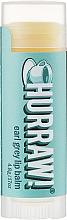 Parfums et Produits cosmétiques Baume à lèvres à l'huile de safran - Hurraw! Earl Grey Lip Balm