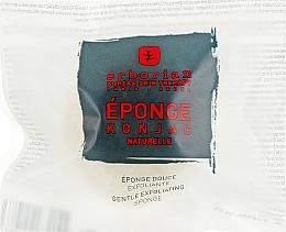 Parfums et Produits cosmétiques Éponge Konjac exfoliante pour visage et corps - Erborian Konjac Sponge