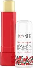 Parfums et Produits cosmétiques Baume à lèvres régénérant à l'huile de pépins de framboise - Vianek Lip Balm