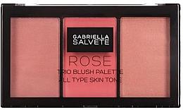 Parfums et Produits cosmétiques Palette de blush - Gabriella Salvete Rose Trio Blush Palette