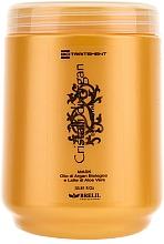 Parfums et Produits cosmétiques Masque à l'huile d'argan et aloe vera pour cheveux - Brelil Bio Traitement Cristalli d'Argan Mask Deep Nutrition