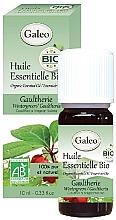 Parfums et Produits cosmétiques Huile essentielle bio de gaulthérie - Galeo Organic Essential Oil Gaultherie
