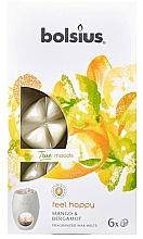 Parfums et Produits cosmétiques Fondants de cire parfumée, Mangue et Bergamote - Bolsius True Moods Feel Happy Mango & Bergamot
