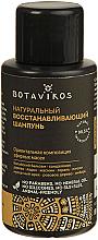 Parfums et Produits cosmétiques Shampooing naturel et régénérant - Botavikos Natural Repairing Shampoo (mini)