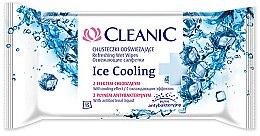 Parfums et Produits cosmétiques Lingettes nettoyantes et rafraîchissantes ,15 pcs - Cleanic Ice Cooling Wipes