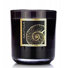 Parfums et Produits cosmétiques Bougie parfumée en jarre - Kringle Candle Nautilus Black Jar Candle