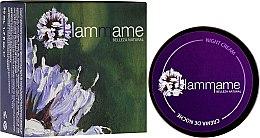 Parfums et Produits cosmétiques Crème de nuit aux huiles de jasmin et calendula - Hammame Facial Night Cream