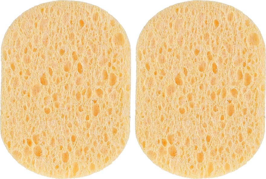 Éponges démaquillantes, ovales - Inter-Vion