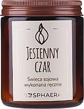 Parfums et Produits cosmétiques Bougie parfumée de soja, Charme d'automne - Bosphaera Autumn Charm Candle