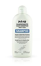 Parfums et Produits cosmétiques Shampooing médicinal à la piroctone olamine pour le soin du cuir chevelu - Kaminomoto Medicated Shampoo