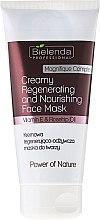 Parfums et Produits cosmétiques Masque au charbon actif et thé vert pour visage - Bielenda Professional Power Of Nature Creamy Regenerating And Nourishing Face Mask
