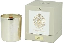 Parfums et Produits cosmétiques Tiziana Terenzi Ursa Scented Candle Gold Glass - Bougie parfumée