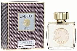 Parfums et Produits cosmétiques Lalique Equus Pour Homme - Eau de Toilette