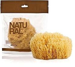Parfums et Produits cosmétiques Éponge de bain - Suavipiel Natural Sea Sponge