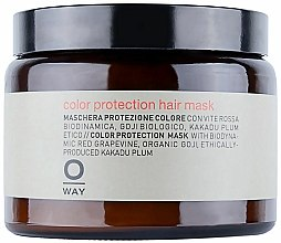 Parfums et Produits cosmétiques Masque à l'extrait de baies de goji pour cheveux - Rolland Oway ColorUp