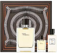 Parfums et Produits cosmétiques Hermes Terre D'Hermes - Coffret (eau de toilette/100 ml + lotion après-rasage/40 ml + eau de toilette/5 ml)