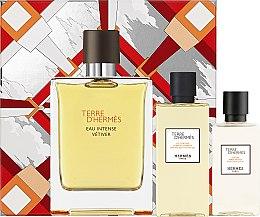 Parfums et Produits cosmétiques Hermes Terre d'Hermes Eau Intense Vetiver Set - Coffret (eau de parfum/100ml + lot. après rasage/40ml + gel douche/80ml)