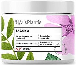 Parfums et Produits cosmétiques Shampooing pour cheveux secs - Vis Plantis Hair Mask