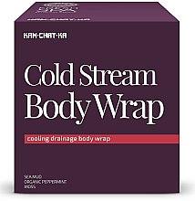 Parfums et Produits cosmétiques Enveloppement refroidissement pour drainage lymphatique du corps - Natura Siberica Fresh Spa Kam-Chat-Ka Cold Stream Body Wrap